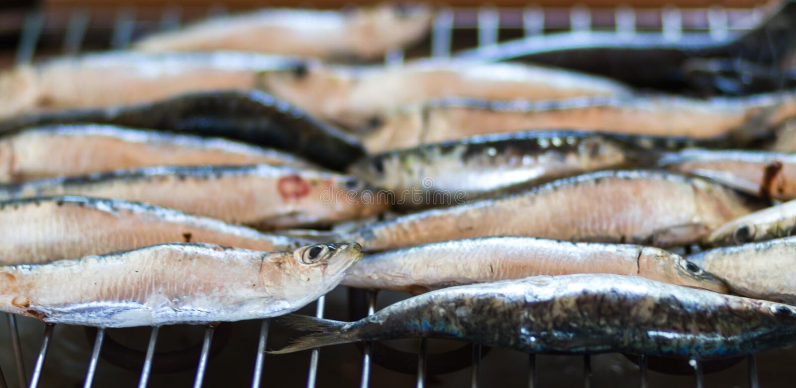 Sardines, bluefish. The typical blue fish sardine is cooked on the grill or in the oven stock photo