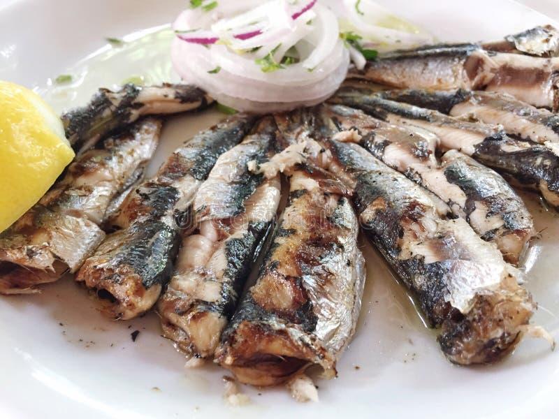 Sardines délicieuses de plat photo libre de droits