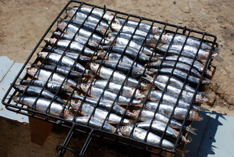Sardines dans le gril prêt pour les braises photographie stock libre de droits