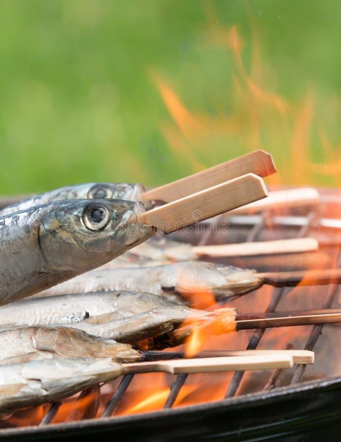 Sardines de gril images libres de droits