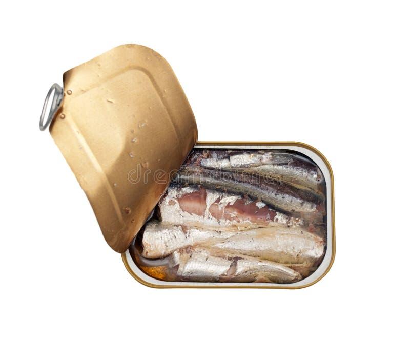 Sardines en boîte photos libres de droits