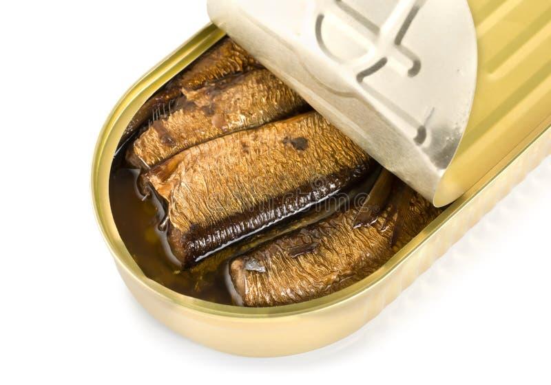 Sardines en boîte d'isolement images stock