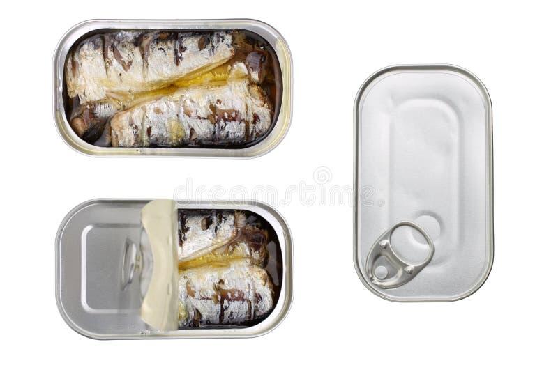 Sardines en boîte en huile d'olive d'isolement photo stock
