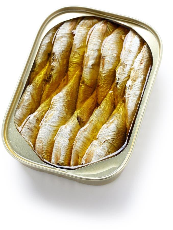 Sardines en boîte en pétrole photo stock