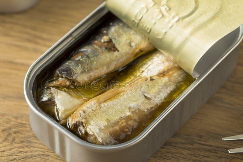 Sardines en boîte salées organiques image libre de droits