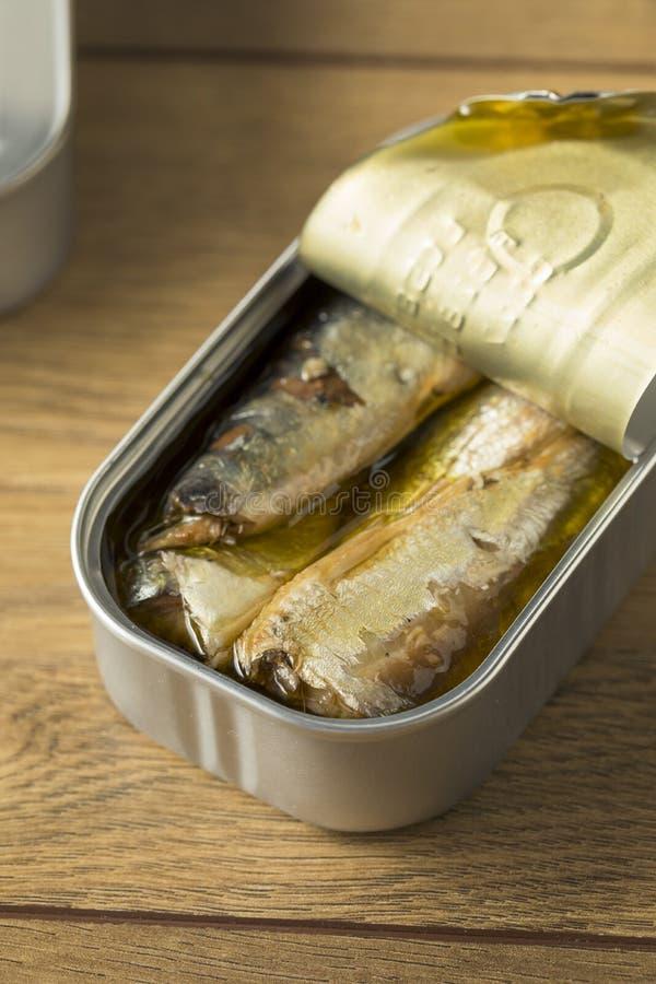 Sardines en boîte salées organiques photographie stock