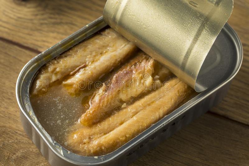 Sardines en boîte salées organiques photographie stock libre de droits