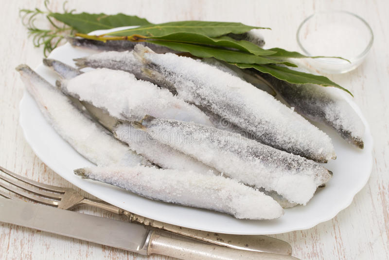Sardines en glace sur le plat blanc photos libres de droits