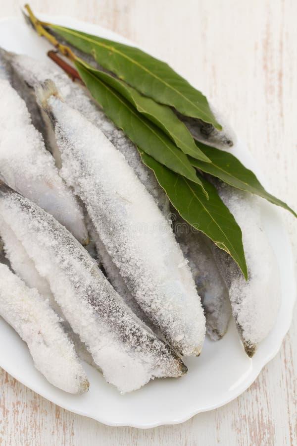 Sardines en glace sur le plat blanc photographie stock libre de droits