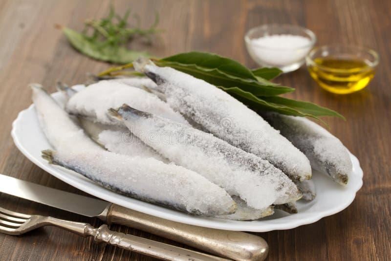 Sardines en glace sur le plat blanc images libres de droits