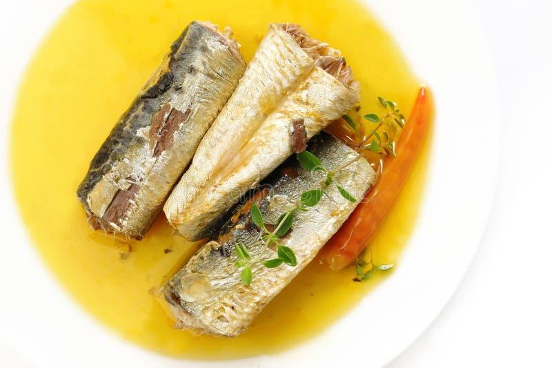 Sardines en huile et piments d'olive vierges supplémentaires photos stock