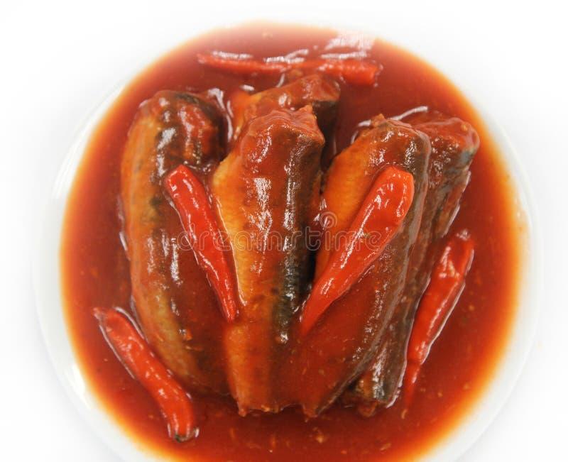 Sardines en sauce tomate images libres de droits