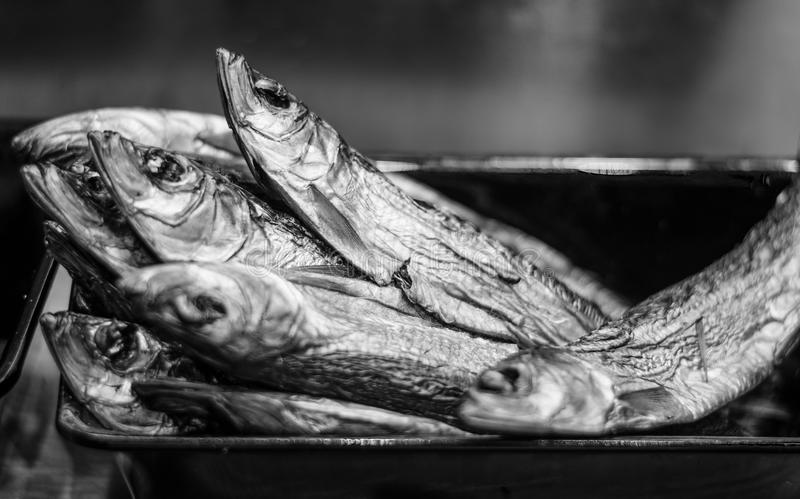 Sardines en sel photographie stock