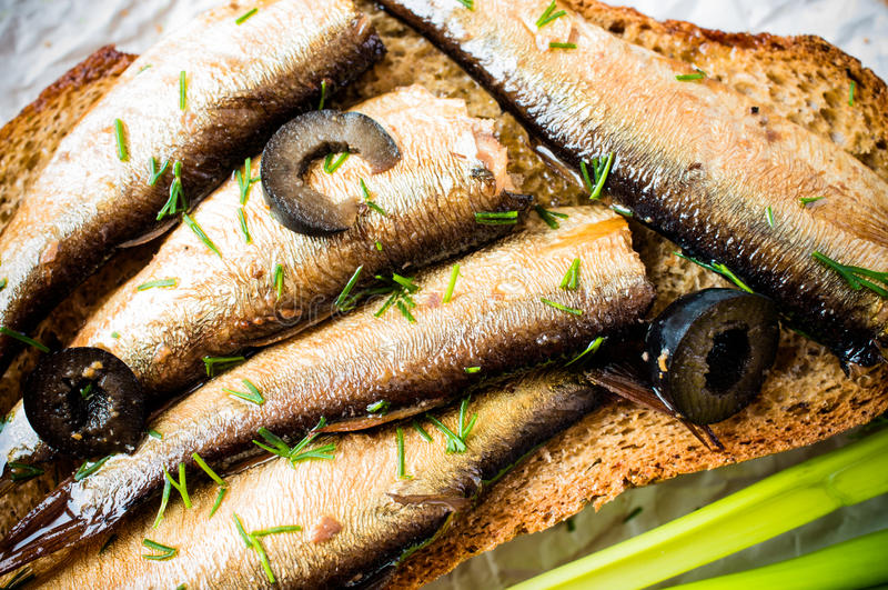 Sardines, esprots photo stock