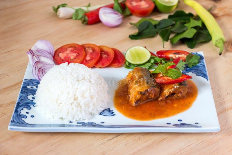 Sardines fish in tomato sauce royalty free stock image