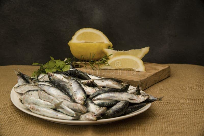 Sardines fra?ches sur un plateau avec des tranches de citron photo libre de droits