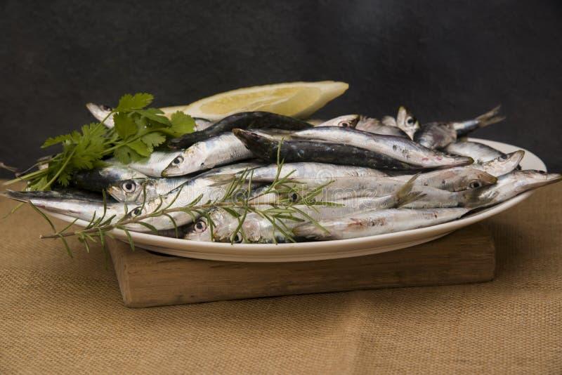 Sardines fra?ches sur un plateau avec des tranches de citron images stock