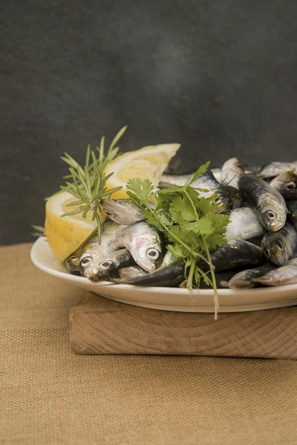 Sardines fra?ches sur un plateau avec des tranches de citron images libres de droits