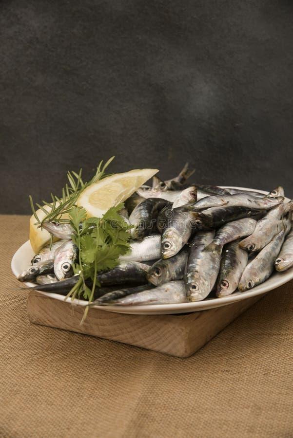 Sardines fra?ches sur un plateau avec des tranches de citron image libre de droits