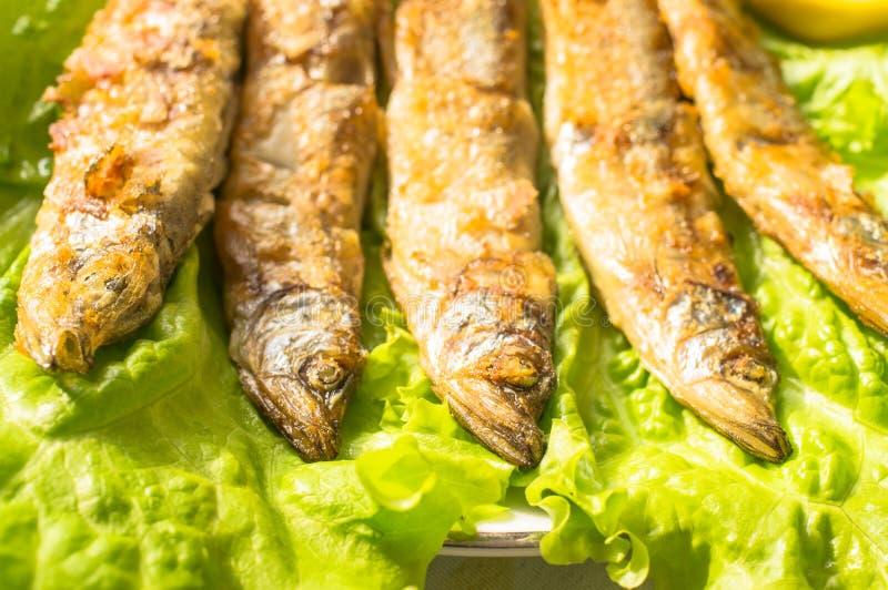 Sardines grillées image libre de droits