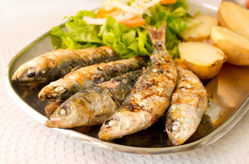 Sardines grillées avec de la salade méditerranéenne et les pommes vapeur image libre de droits