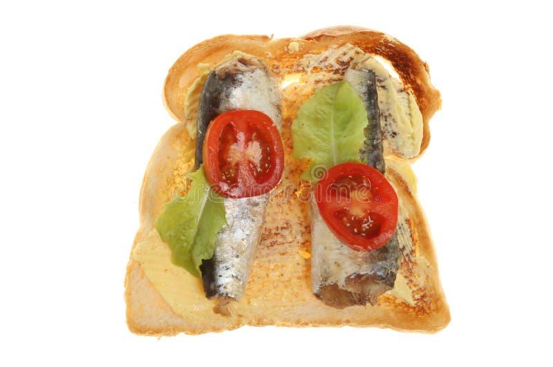 Sardines op toost stock foto's