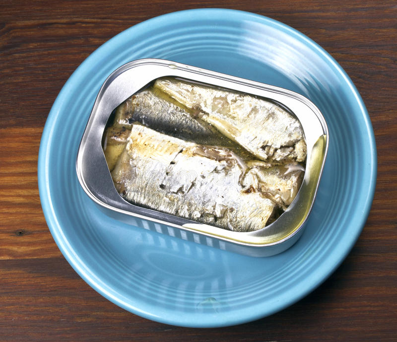 Sardines in an open can. On a blue plate royalty free stock images