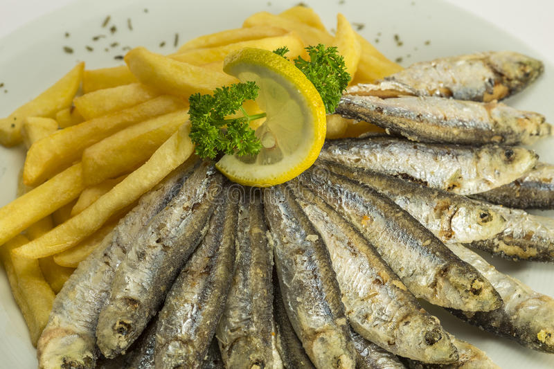 Sardines on a plate. Sardines served on a plate stock photography
