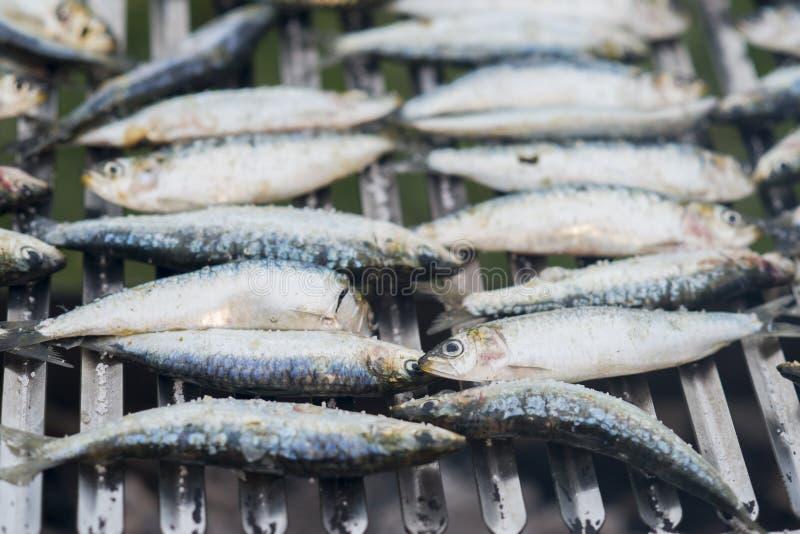 Sardines préparant sur un gril photo libre de droits