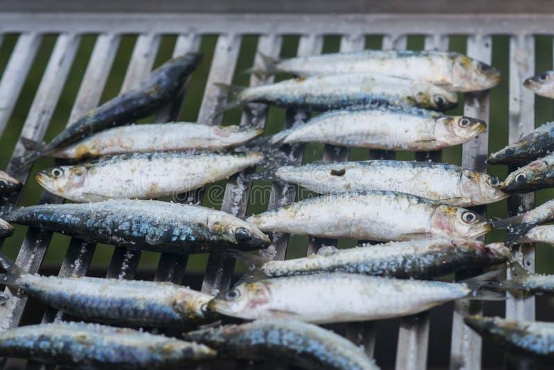 Sardines préparant sur un gril image stock