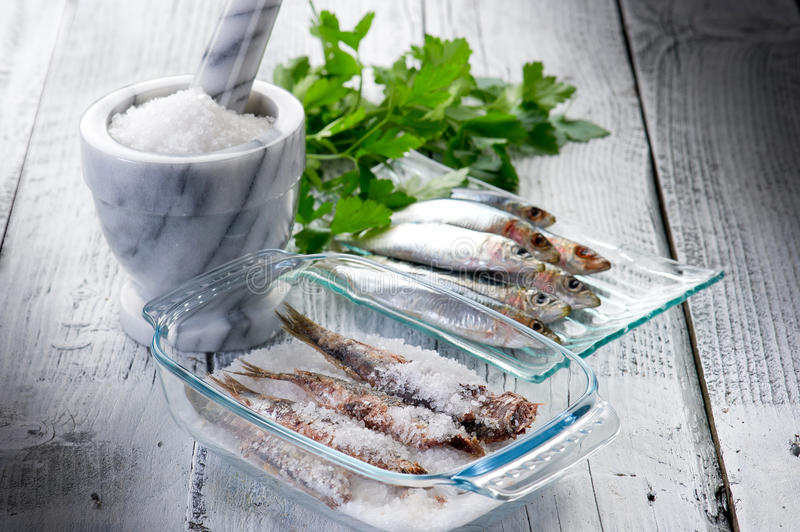 Sardines with salt stock photo