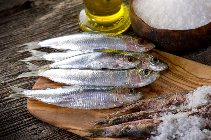 Sardines with salt stock image