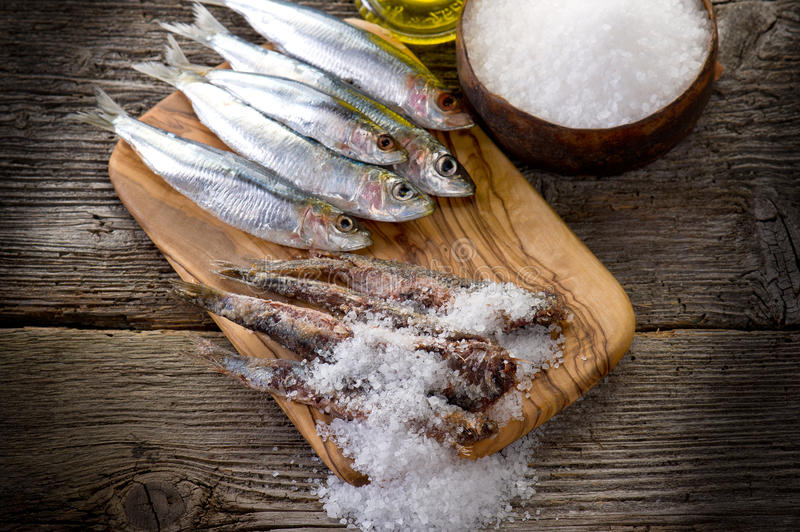 Sardines with salt royalty free stock photo