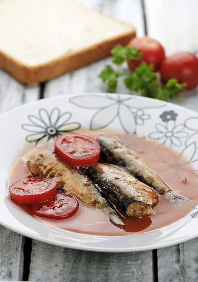 Sardines servies avec de la sauce à tomatoe photo libre de droits