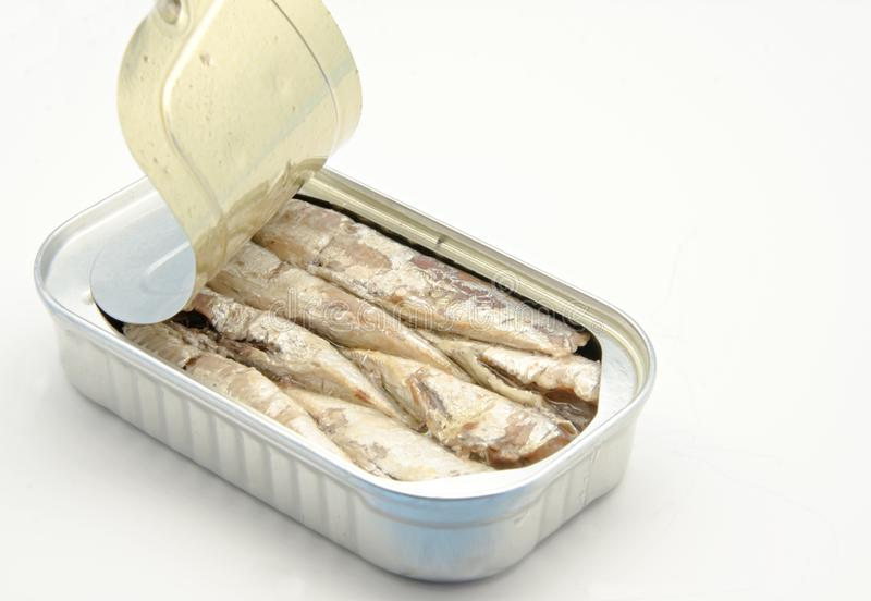 Sardines. Tin with canned sardines on white background stock images