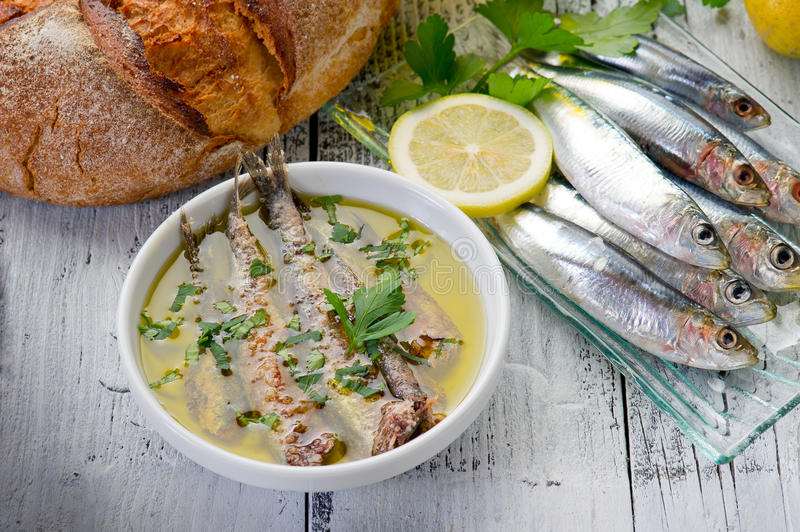 Sardines under oil royalty free stock photo