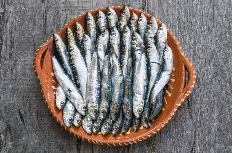 Sardines. In wooden background with great detail royalty free stock image