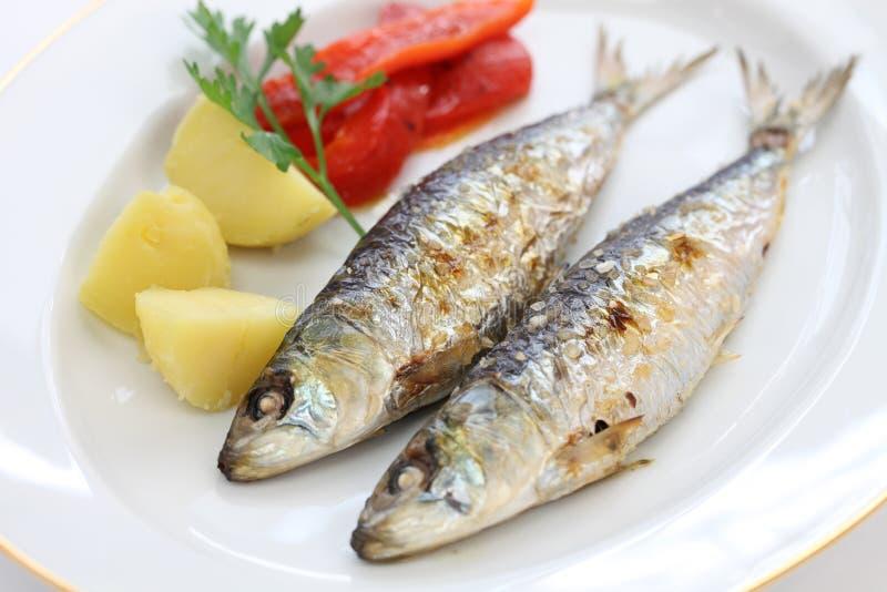 Sardinhas assadas, charcoal grilled sardines. Portuguese food royalty free stock photos