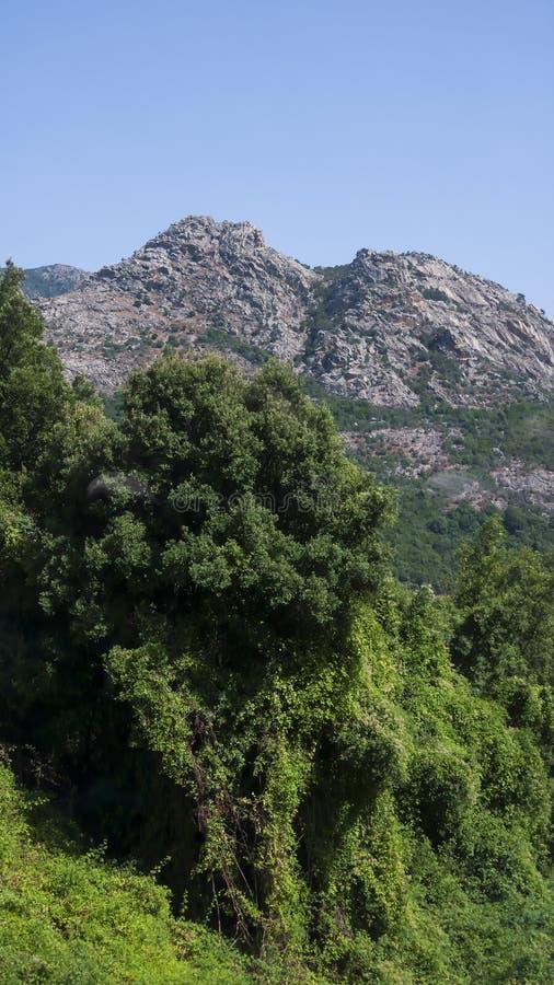 Sardinian bergskedja under en blå himmel arkivfoton