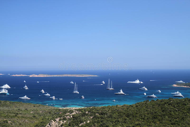 Sardinige stock fotografie