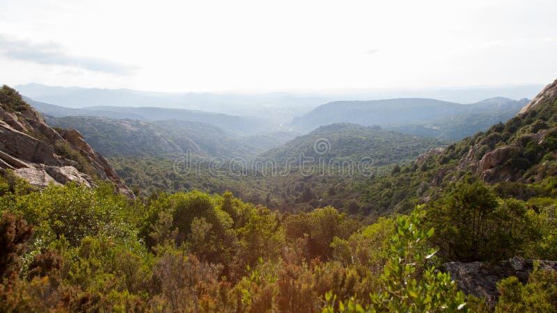 Sardyński halny lato zmierzchu krajobraz Las na zboczu pod niebem z chmurami fotografia stock