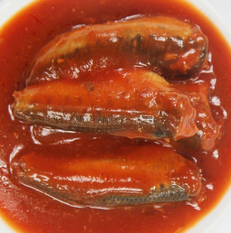 Download Sardynki W Pomidorowym Kumberlandzie Obraz Stock - Obraz złożonej z czerwień, utrzymany: 53778029