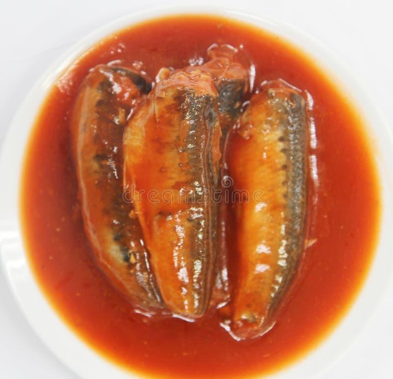 Download Sardynki W Pomidorowym Kumberlandzie Obraz Stock - Obraz złożonej z sardynki, pomidor: 53778037