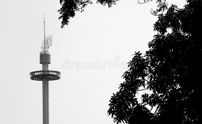Sari Tower domesticando foto de stock royalty free