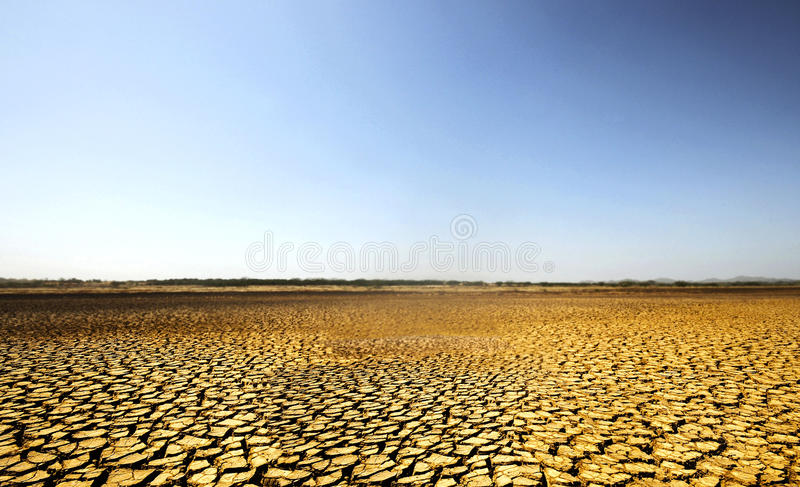 Sarigua沙漠 免版税库存图片