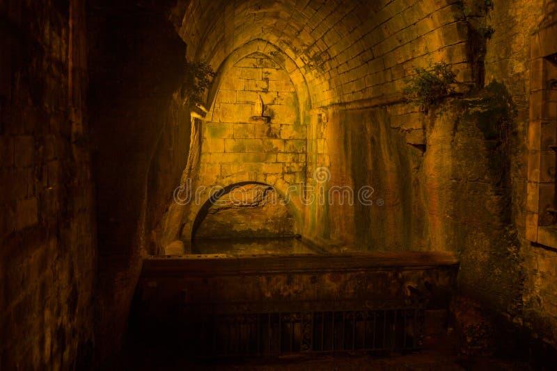 Sarlat fountain at night stock image