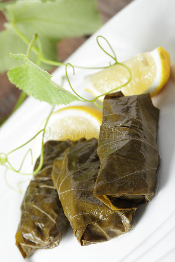 Sarma stock photos