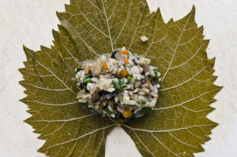 Sarma or dolma - Rice wrapped in grape leaves royalty free stock photos