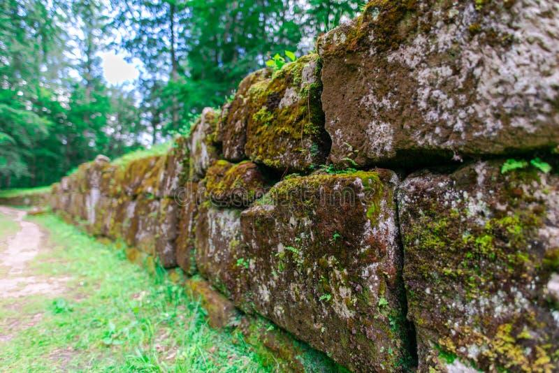 Sarmisegetusa regia, Old ruins in Transilvania, Orastie Mountains, Romania. Old ruins in Sarmisegetusa Regia, Orastie Mountains, Romania stock photo