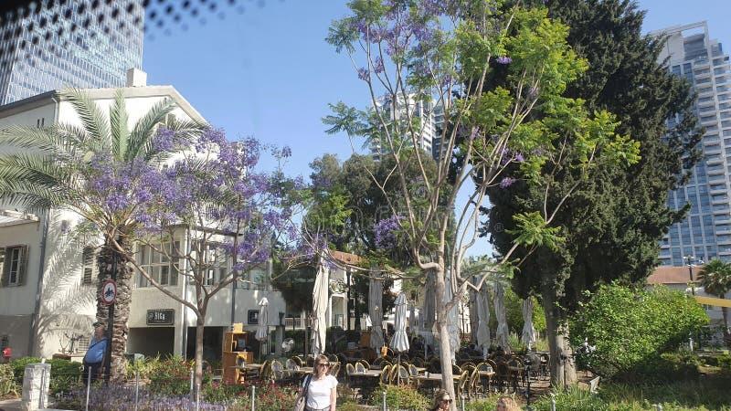 Sarona neibourhood i mitten stads- Tel Aviv Israel royaltyfri foto